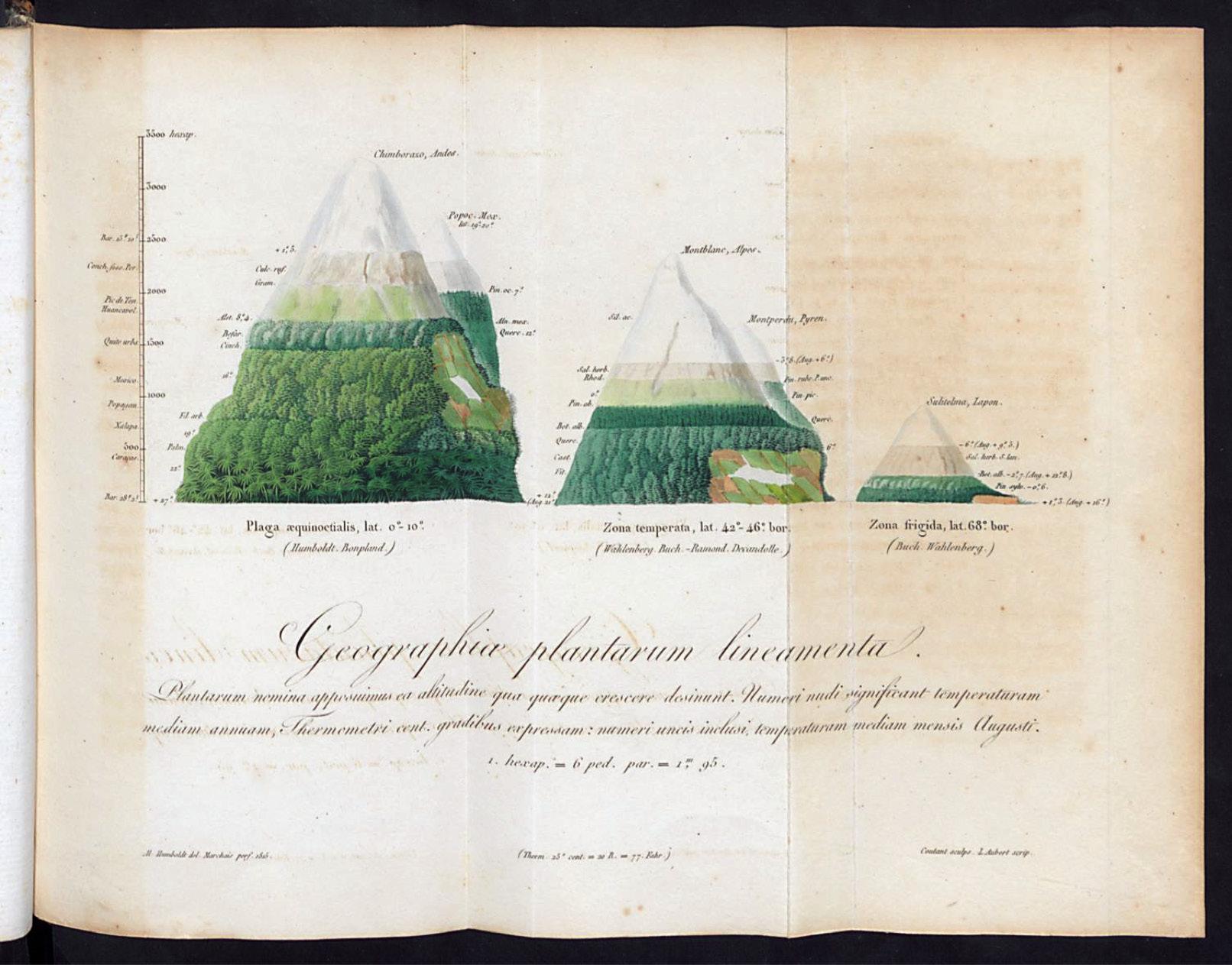 260-geographieae_plantarum.tiff